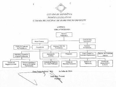 Organograma Camara