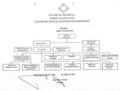 organograma camara.png